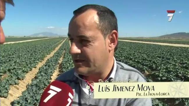 Murciaeconom - Soltec murcia ...